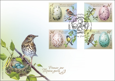 Eggs of birds