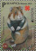European hamster