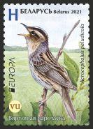 Aquatic warbler