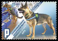 German Shepherd Kira
